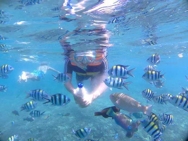 Pesona Pulau Lombok